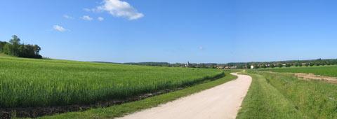 panorama d'un champs
