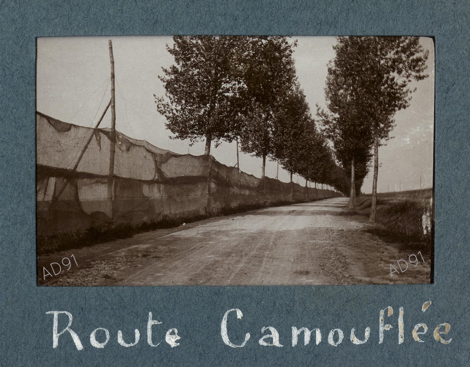 29 - Route camouflée, photographie. (032NUM019/035)