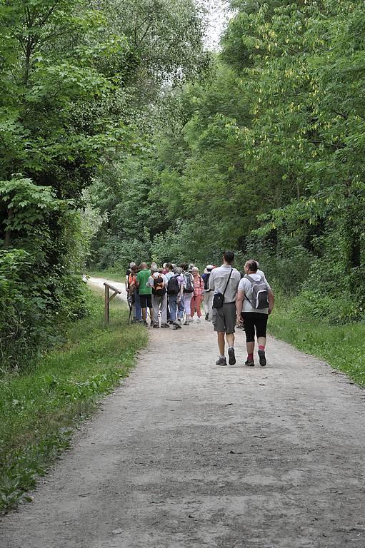 Randonnée en vallée de la Rémarde à Bruyères-le-Châtel